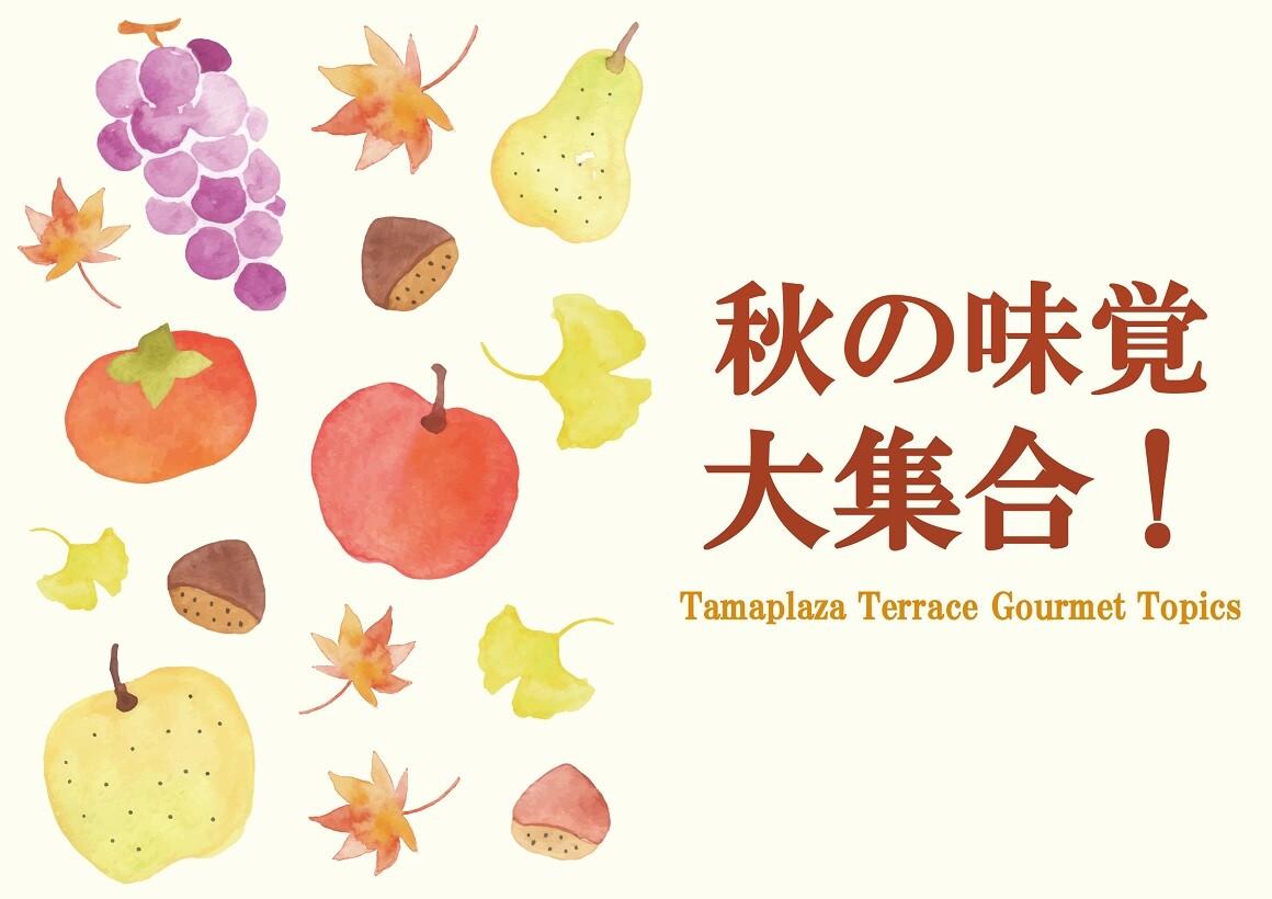 ★秋の味覚 大集合!特集