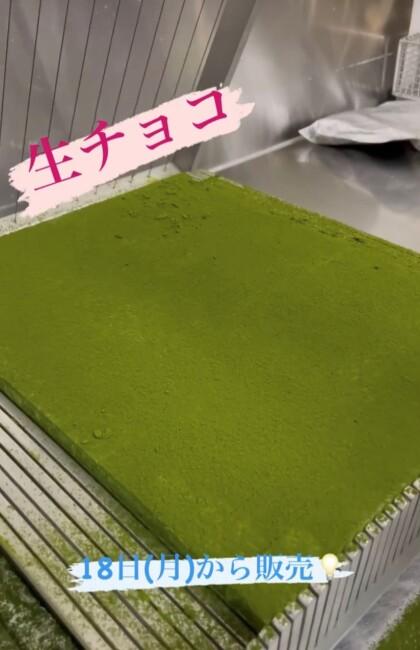 生チョコレート抹茶 販売開始!
