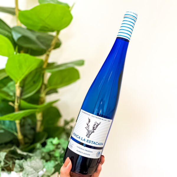 今日は海の日!見た目も涼しい、ブルーボトルの白ワインはいかがですか?