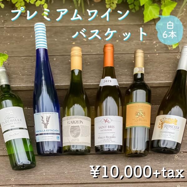 【ワインセット】毎月人気!!7月の白ワイン6本セットの案内です!