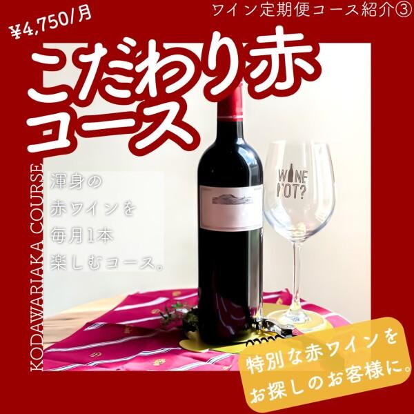 月1のプチ贅沢💗赤ワインラバーの皆様へ贈る🎁