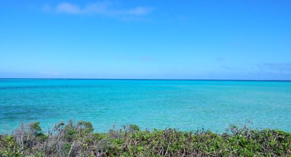 ★沖縄の夏が始まります★